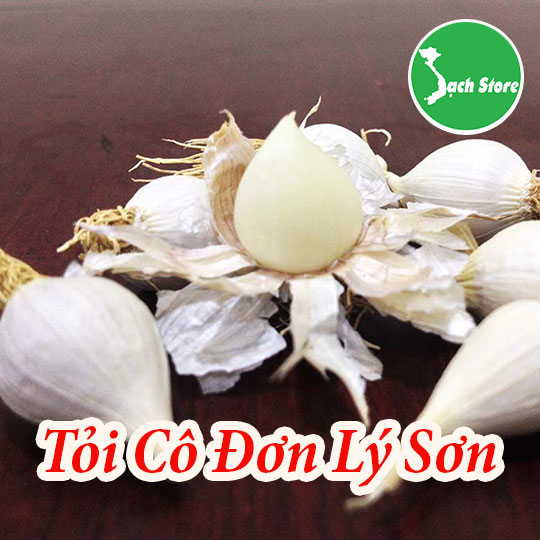 Toi co don Ly Son Sach Store (3)