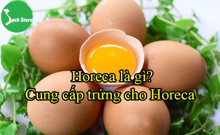 Horeca là gì? Cung cấp trứng cho Horeca
